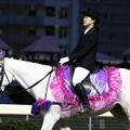 写真: 川崎競馬の誘導馬05月開催 藤Ver-120514-05-large