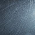 Photos: 吹雪。