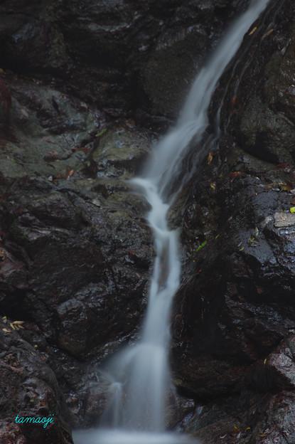中山渓 雌滝