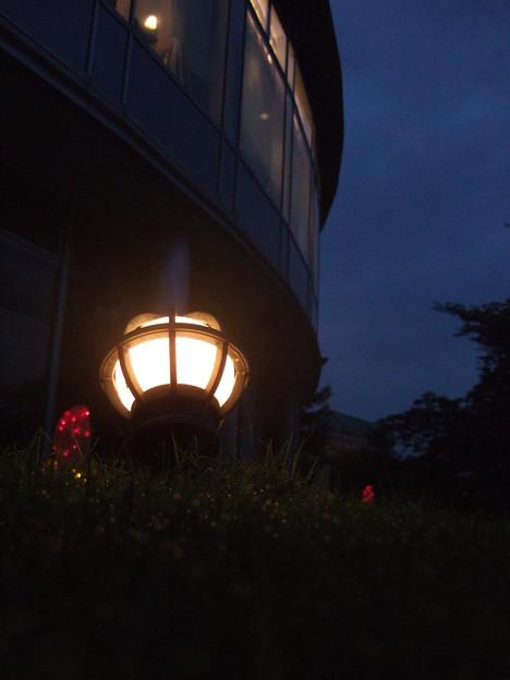 Photos: 鈴鹿の夜は更けて?
