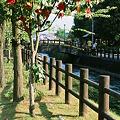 Photos: CONTAX159MM_FUJI_Provia100F05052011-04