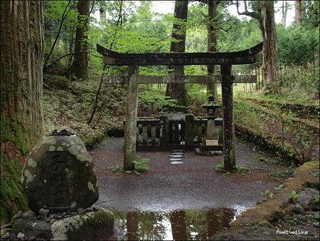 http://art14.photozou.jp/pub/216/242216/photo/22328224.jpg