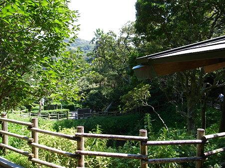 周囲を木柵で囲まれた堂ヶ島天窓洞