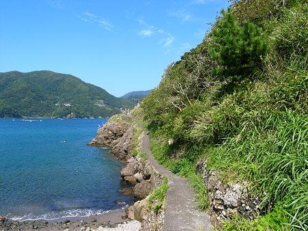 田子・瀬浜海岸の恵比寿様への道