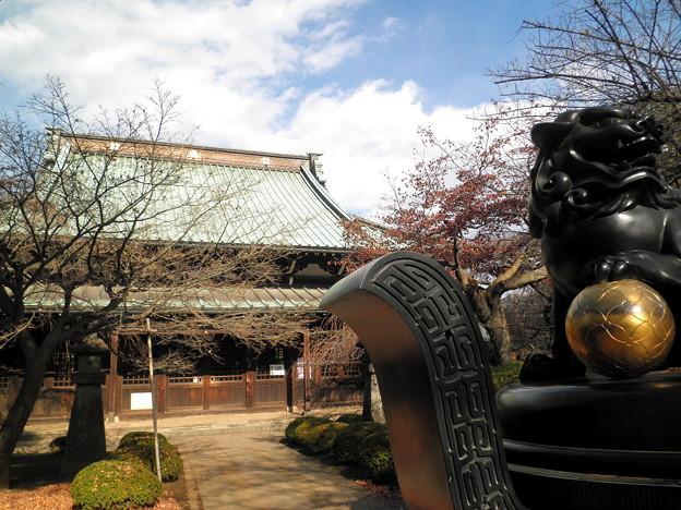世田谷線:宮の坂駅界隈_豪徳寺-08仏殿a紅葉
