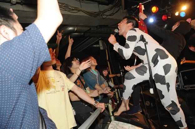 牛の日13
