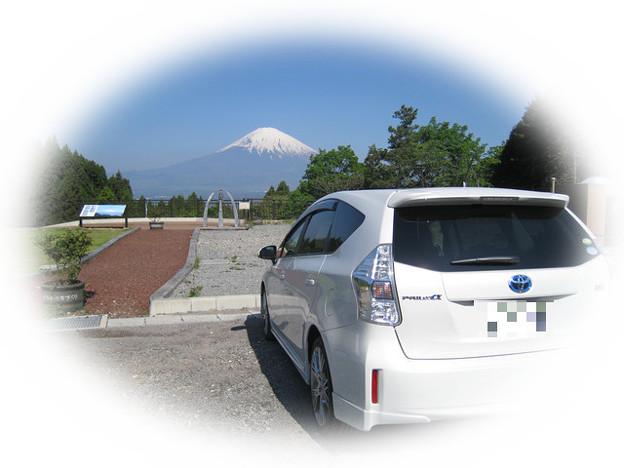 富士を眺めるαちゃん