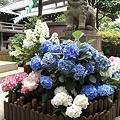 写真: R0017680