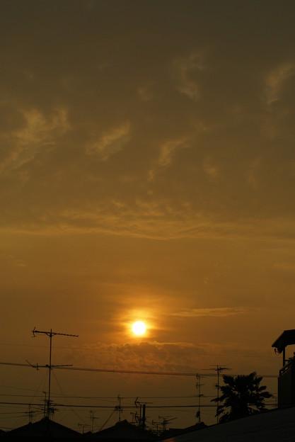 落陽 2009-08-29-2