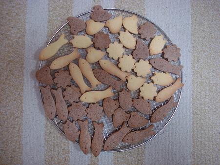 20091107 クッキー