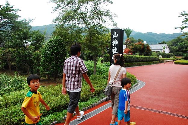 Photos: 雲見オートキャンプ場114