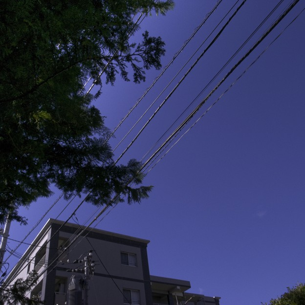 Photos: 2009-09-10の空1