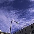 Photos: 2009-11-01の空