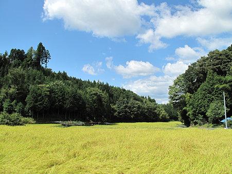 岩村農村景観日本一?