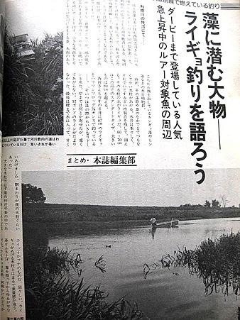 利根川のライギョ釣り