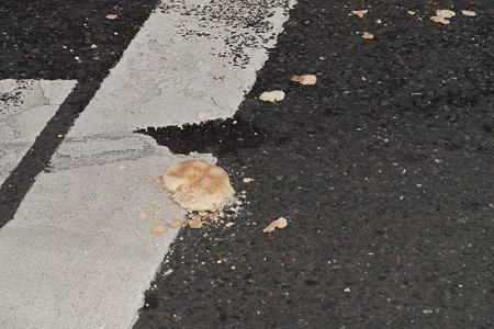 交通事故にあったメロンパン