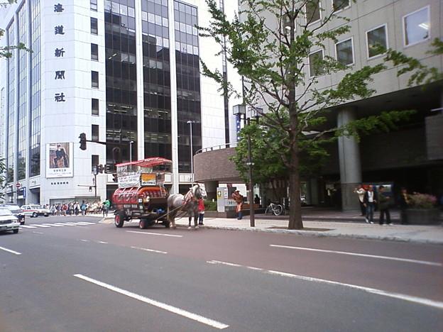 観光馬車1