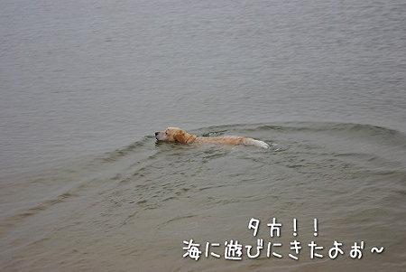s-myu2009_0627(196)