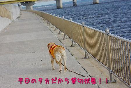 s-myu2009_0702(222)