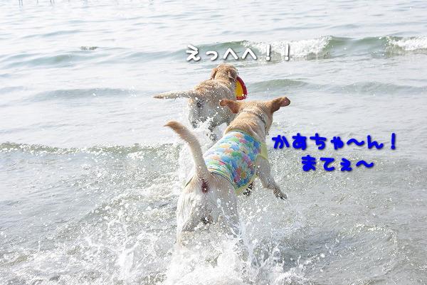 s-myu2009_0829(059)