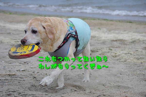 s-myu2009_0829(210)