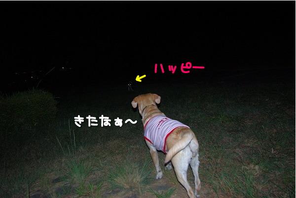 s-myu2009_0831(014)