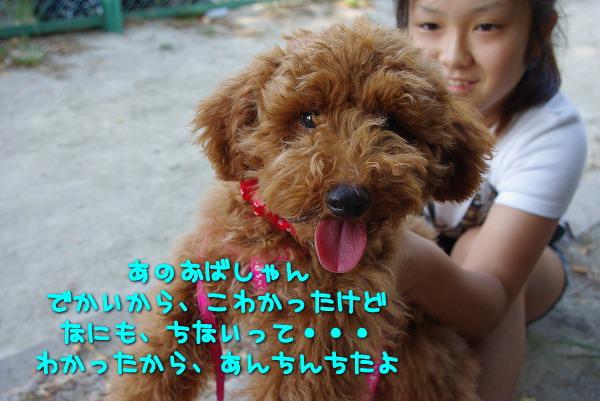 s-myu2009_0906(065)
