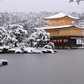 写真: 金閣寺14