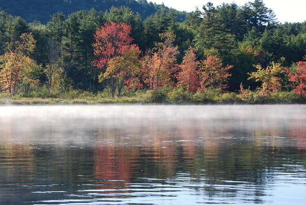 Photos: Morning Mist 9-6-09