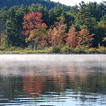 Morning Mist 9-6-09