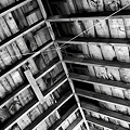 The Sugar Shack Ceiling