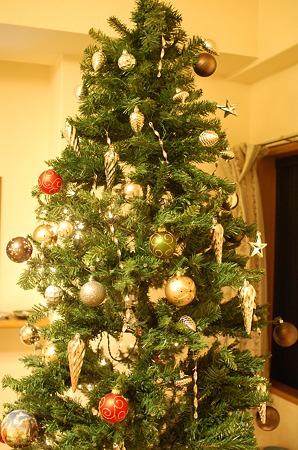 2010年12月25日