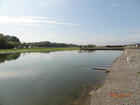 増井養魚場
