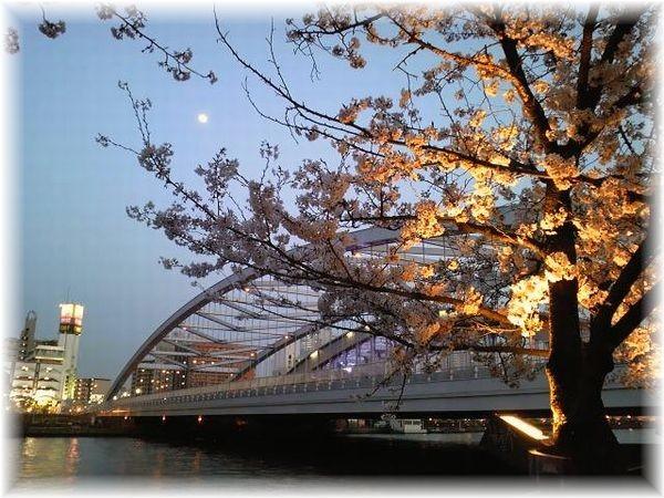 毛馬桜之宮公園 銀橋