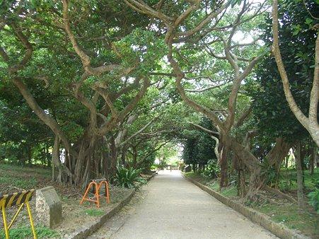 沖縄出張 041