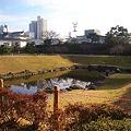 Photos: 駿府公園お壕 CIMG3523