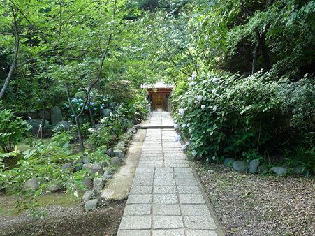090612-源氏山・葛原が丘 (7)