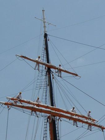 090720-日本丸 総帆展帆 (30)