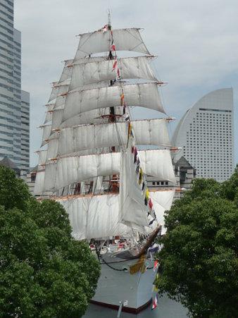 090720-日本丸 総帆展帆 (111)