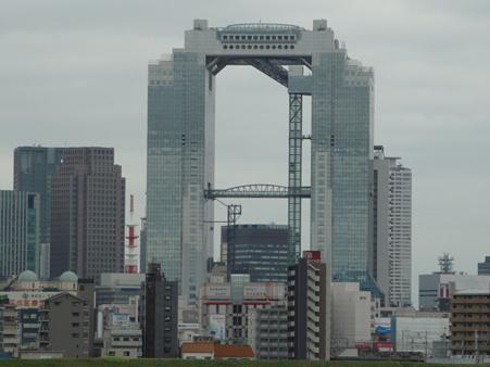 090831-淀川河川敷 (17)