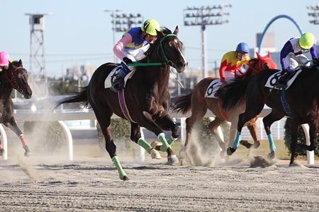 6R勝ち馬 7ヘリオス