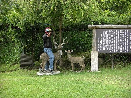 マタガリ~タon鹿