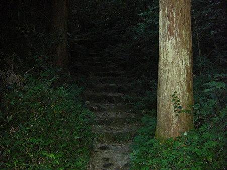 暗い登山道