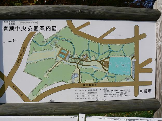 青葉中央公園P1010281
