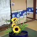 Photos: 夏の日の向日葵