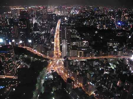 東京の夜景s