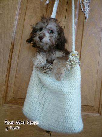 おチビ犬のためのニットバッグ 1