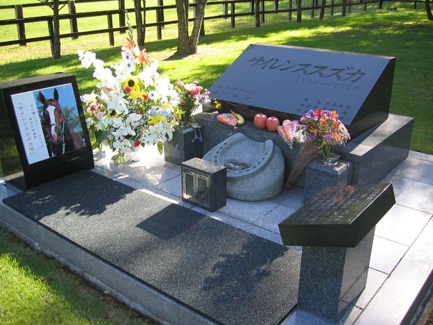 Photos: サイレンススズカのお墓