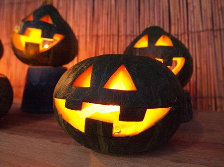 かぼちゃ発見!