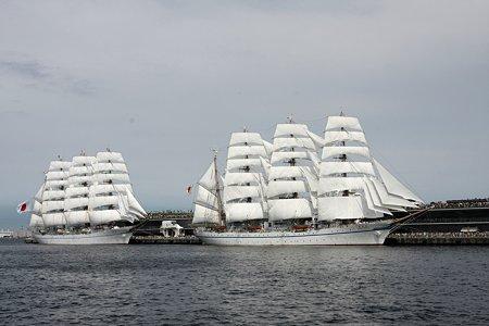 2009.07.20 みなとみらい 日本丸・海王丸総帆展帆完成